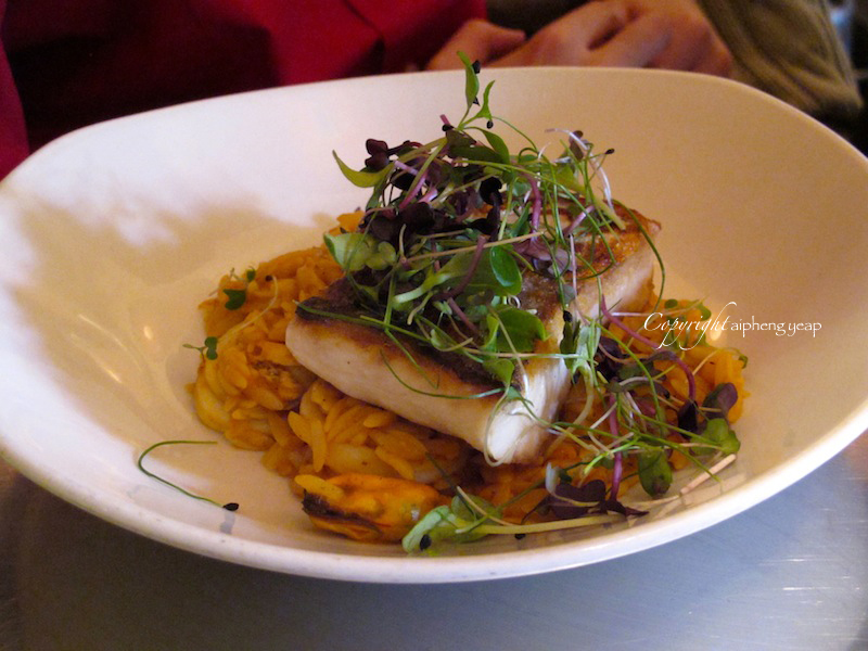 Halibut | The Trishaw
