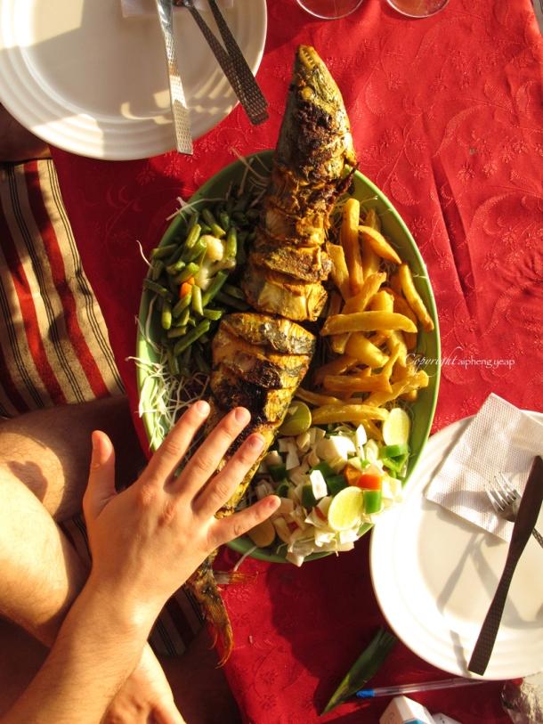 Kingfish at Chilis | The Trishaw