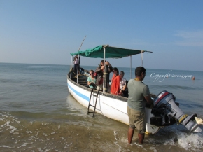 Dolphin watch at Palolem | Goa