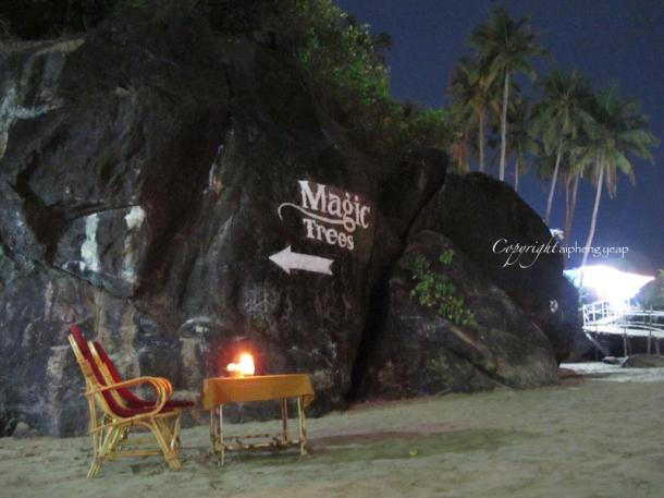 Magic Tree Palolem | The Trishaw
