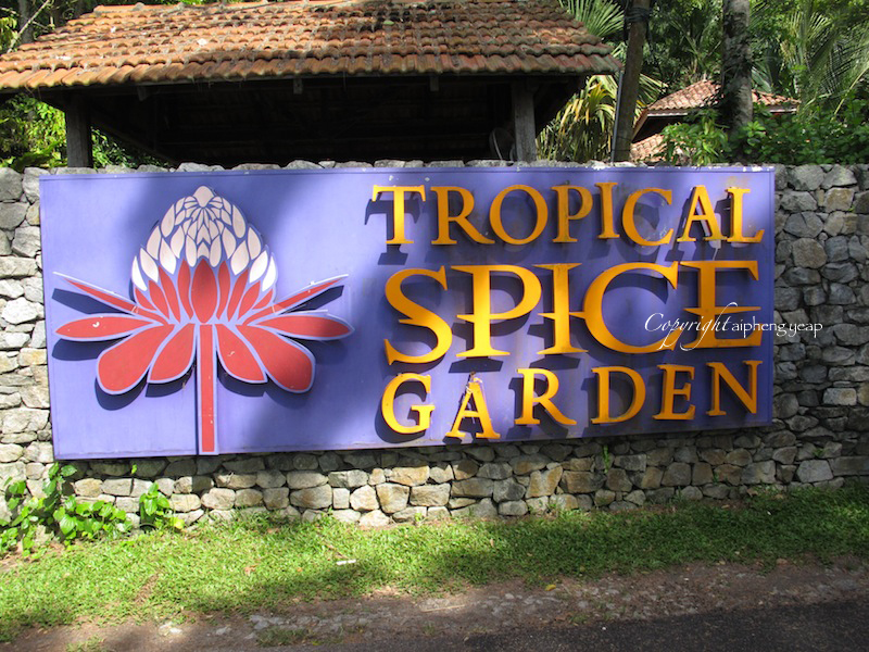 Tropical Spice Garden 2 | The Trishaw