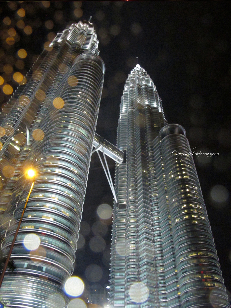 Twin Tower | The Trishaw