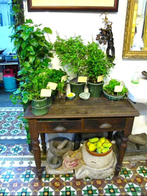 Fresh Herbs | The Trishaw