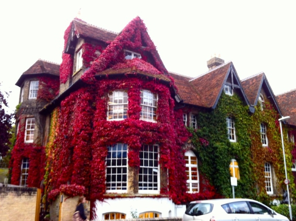 Lovely Cambridge | The Trishaw